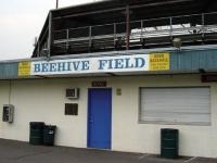 beehive_stadium_8