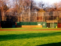 brewster_field_1